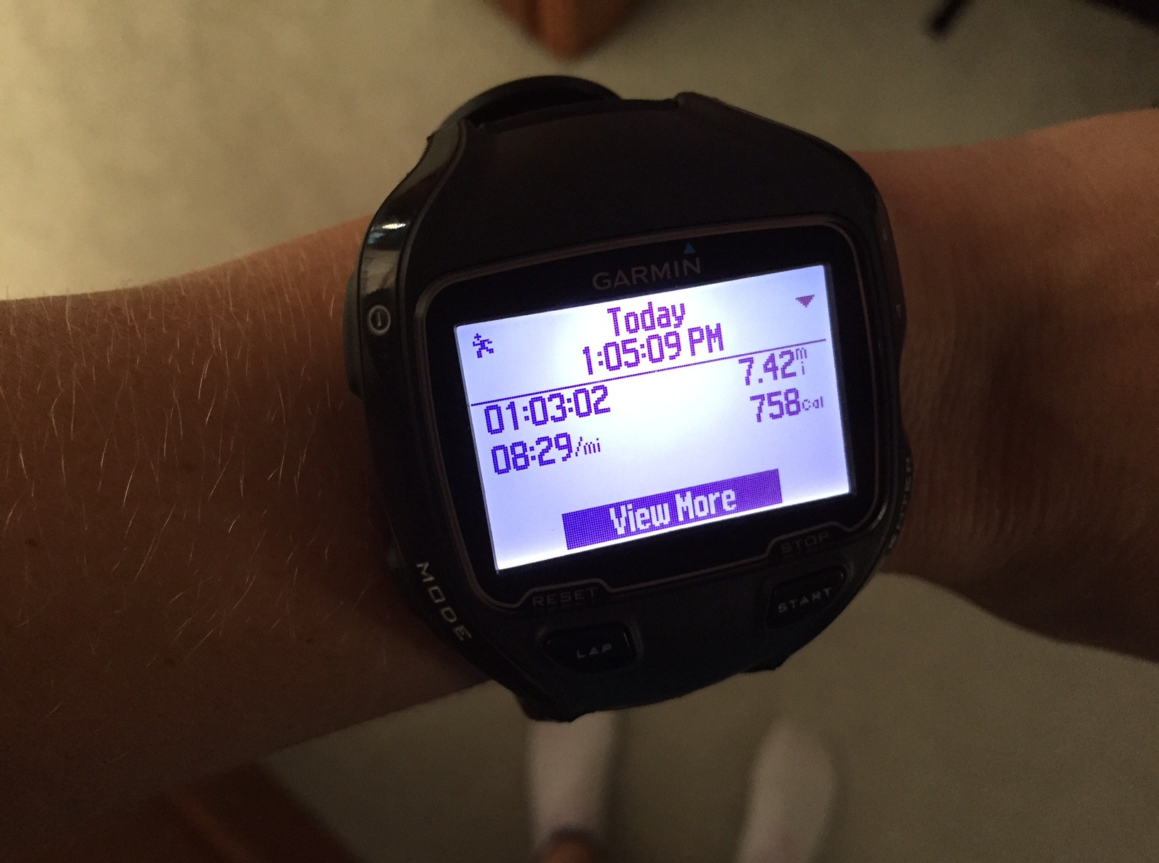 zephyr heart rate monitor manual